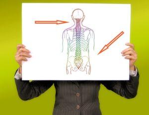 Zu lange in einer Haltung verharren ist Gift für deine Wirbelsäule. Wenn du deine Lendenwirbelsäule mobilisieren möchtest (unterer Rücken), helfen dir die folgenden Übungen